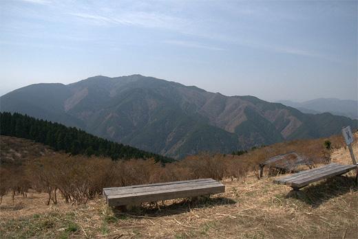 20110410-4.jpg