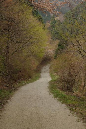 20110424-2.jpg