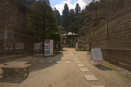 20110424-20.jpg