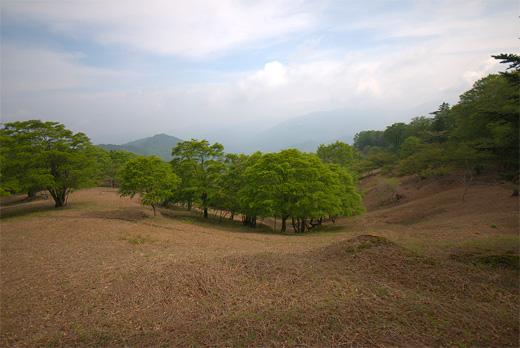 20110604-8.jpg