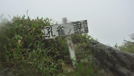 20110619-41.jpg