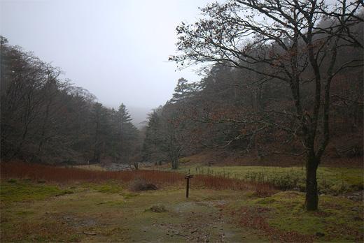 20121111-14.jpg
