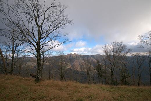 20121119-41.jpg
