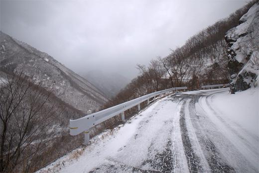 20121211-5.jpg