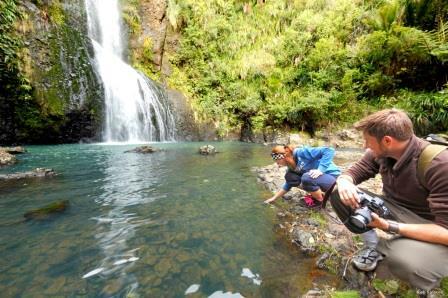 piha kitekite滝