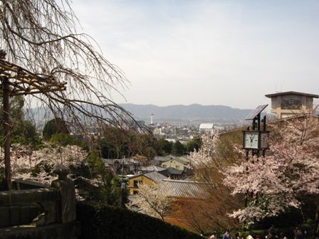 maruyama (3)