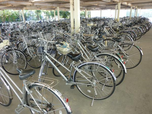 ... の自転車の点検を行いました