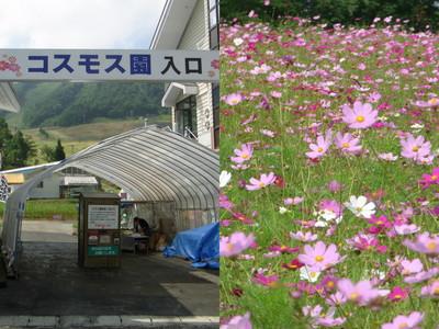 2011高山2