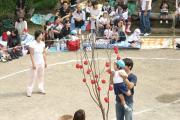 20101003_091.jpg