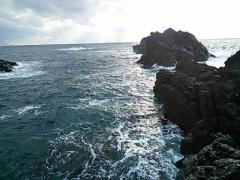 20131208 なべの根っこ