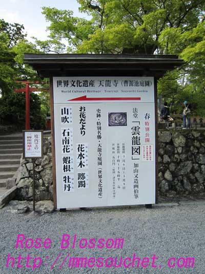 天竜寺ボード20100501