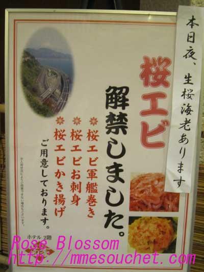 桜エビboard20100502
