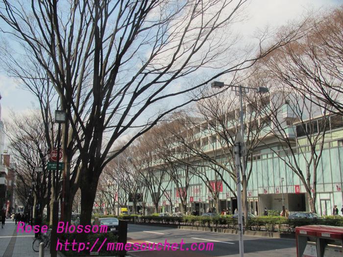 201103251.jpg