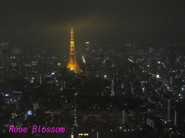 Tokyotower20100304.jpg