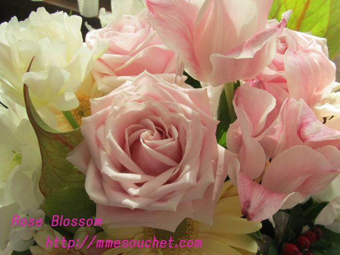 arange20110210.jpg