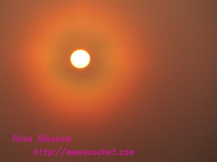 asahi201104191.jpg