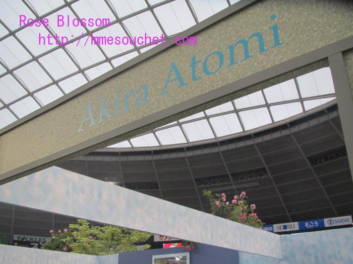 atomiboard20110512.jpg