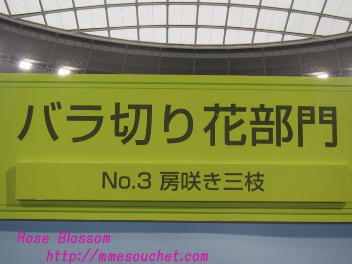 board201105111.jpg