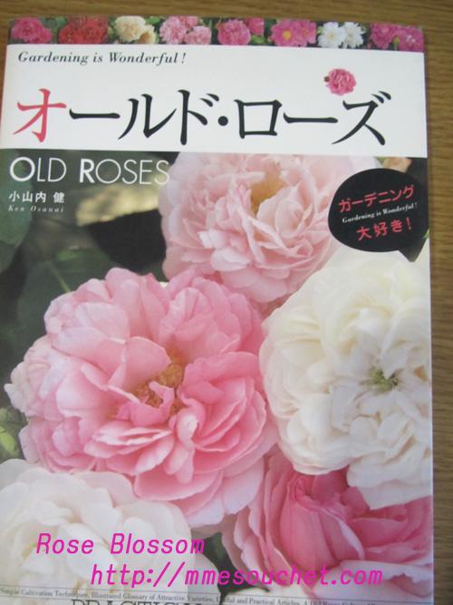 book201102112.jpg