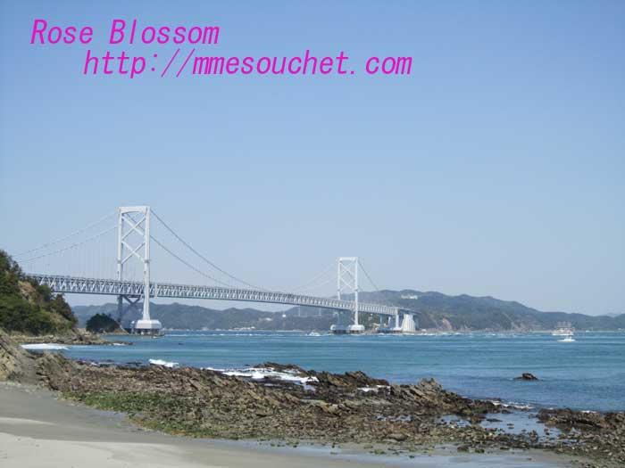 bridge120100429.jpg
