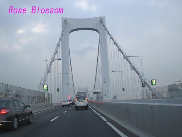 bridge20100219.jpg