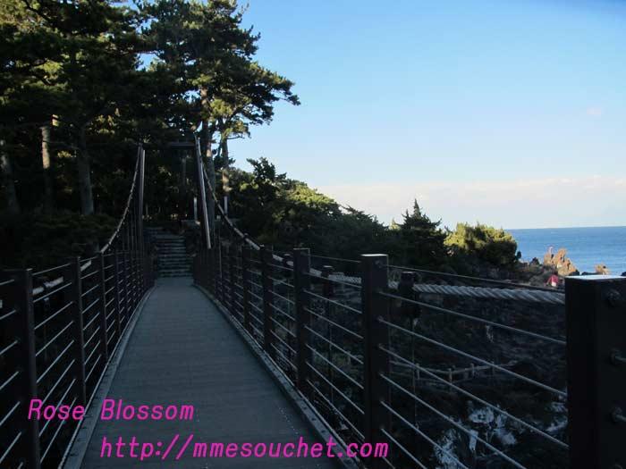 bridge201101301.jpg