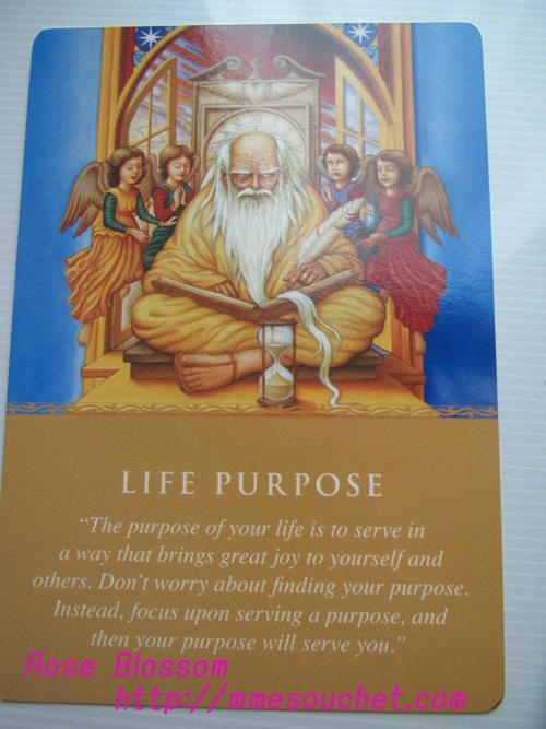 card20110331.jpg