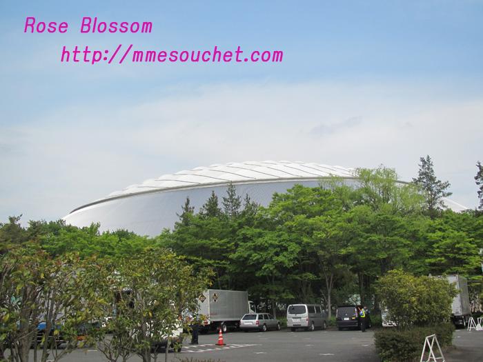 dome20110509.jpg
