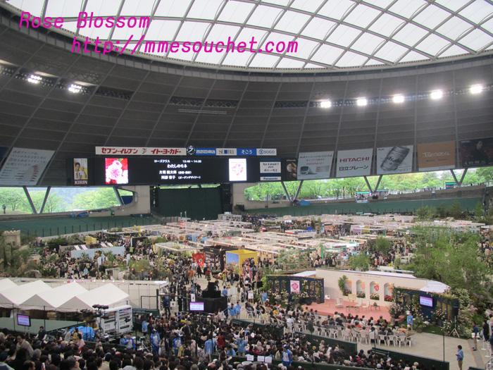 dome20110511.jpg