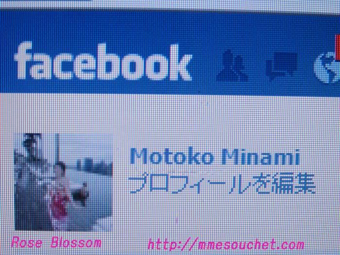 facebook20110129.jpg