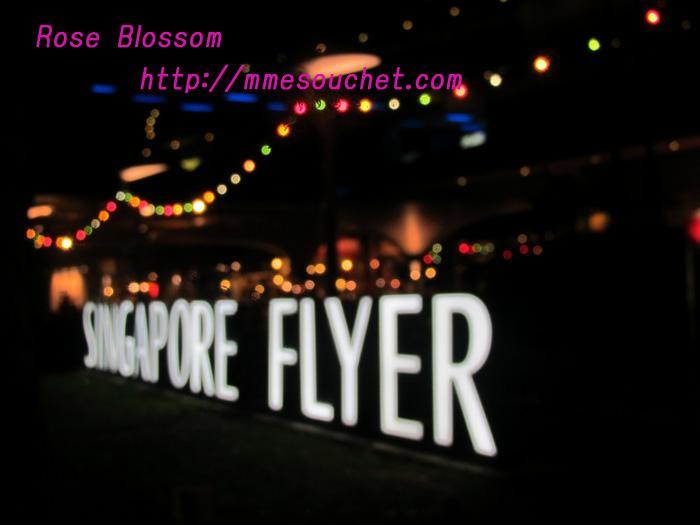 flighterboard20110416.jpg