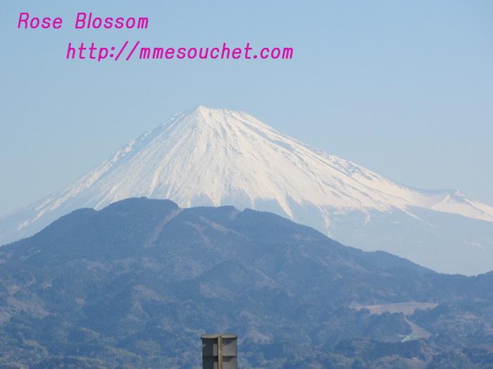 fuji20110313.jpg
