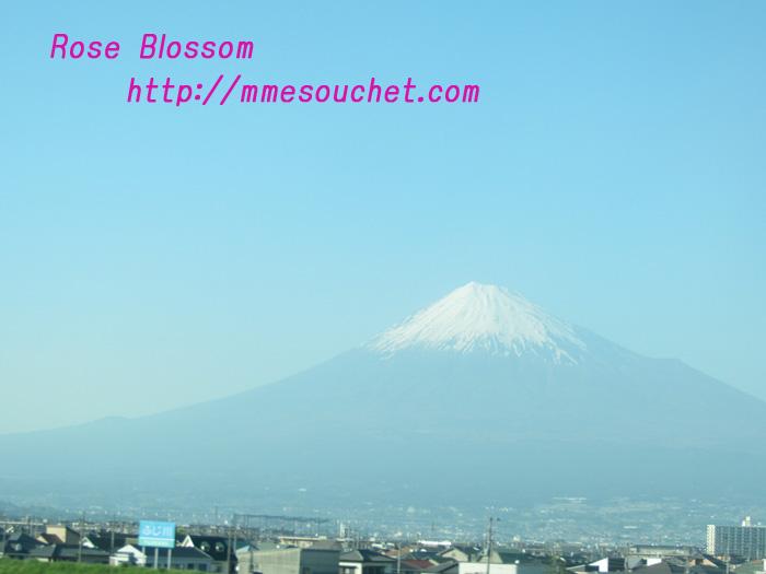 fuji201105081.jpg