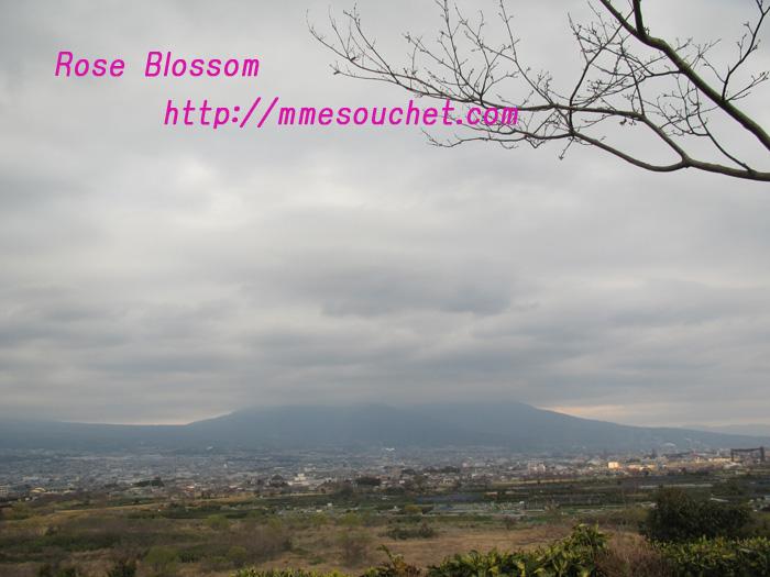 fujisan20110401.jpg