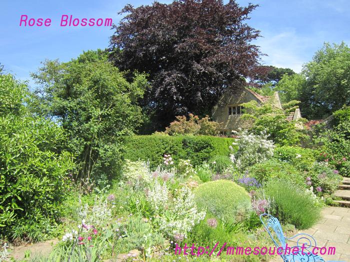 garden201101274.jpg