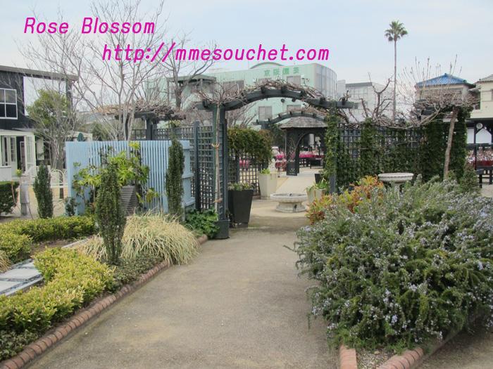 garden201103061.jpg
