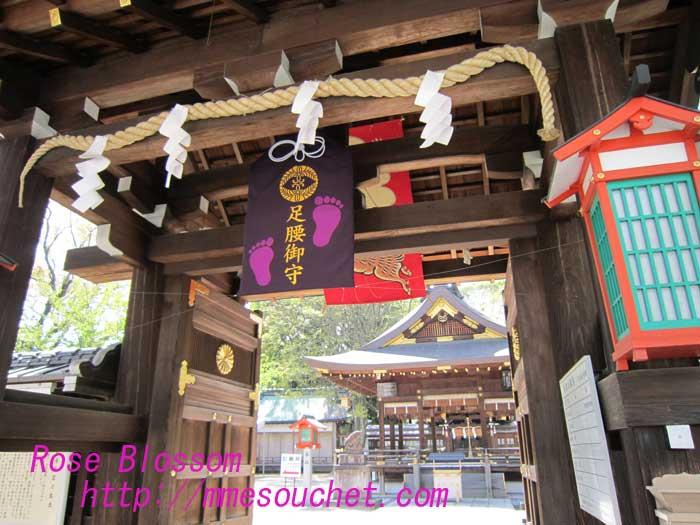goojinjyamon20100428.jpg