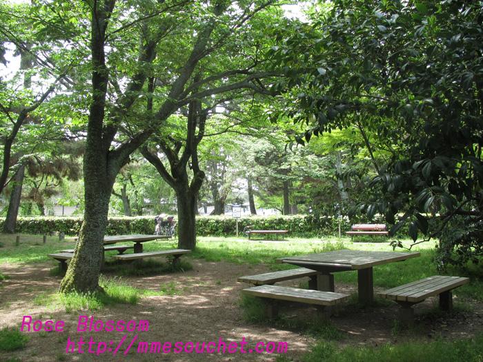 gosyo20110508.jpg