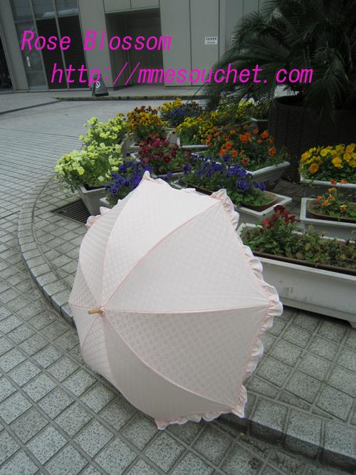 higasa20100522.jpg
