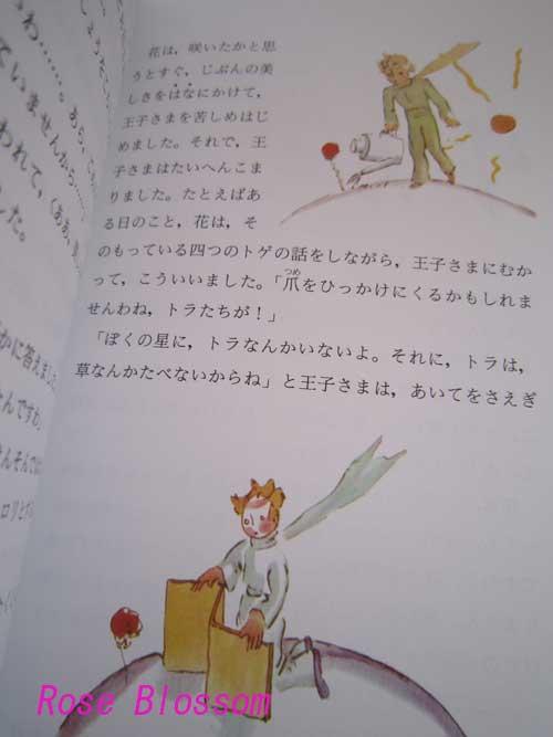 hosinooujibook20100505.jpg