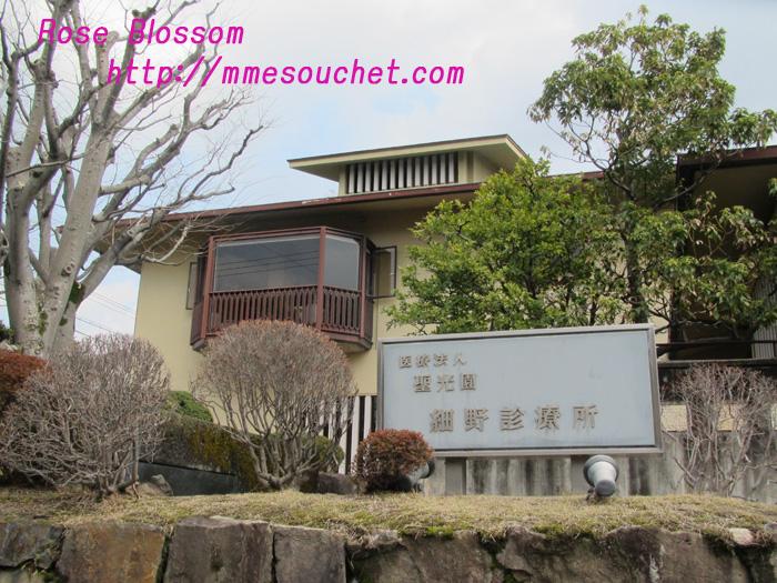 hosono20110307.jpg