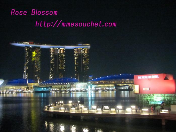 hotelbayyakei20110416.jpg