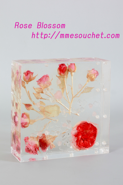 icebox20101217.jpg