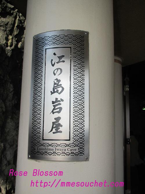 iwaya20110227.jpg