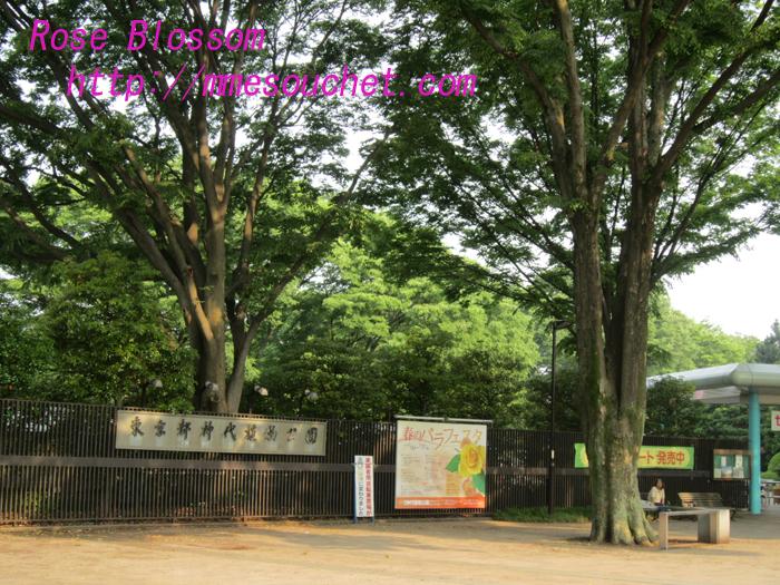 jindaijimon20100525.jpg