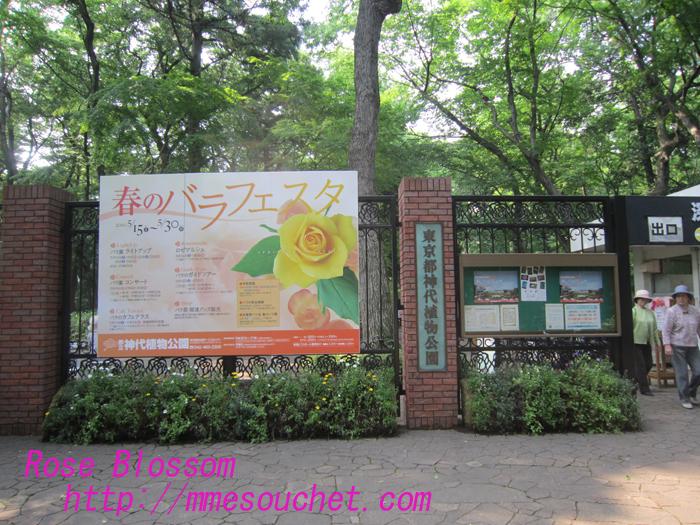 jindaijiuramon20100525.jpg