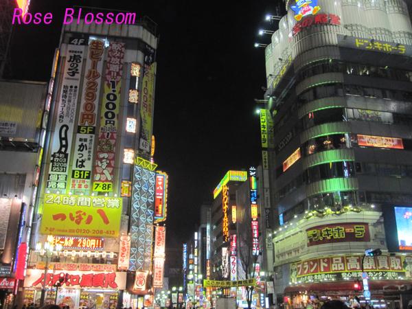 kabukichoall20100223.jpg