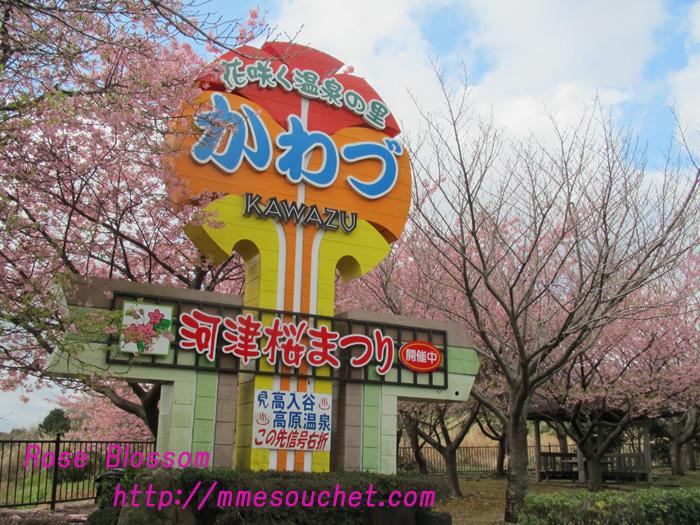 kawazu20110226.jpg