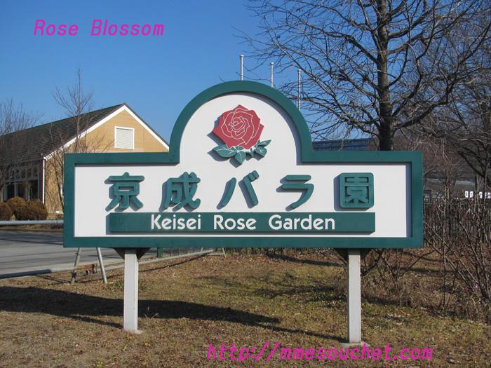 keisei20110204.jpg