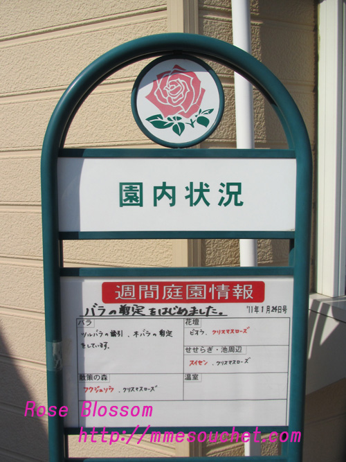 keiseimigoro20110204.jpg